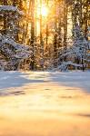 Снежное Поленово, Фото: 43