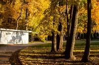 Золотая осень в Туле-2019, Фото: 125
