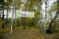 В Веневском районе высажено 24 тысячи сосен, Фото: 3