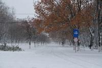 Снежная Тула. 15 ноября 2015, Фото: 32
