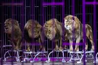 Шоу фонтанов «13 месяцев»: успей увидеть уникальную программу в Тульском цирке, Фото: 219