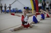 Соревнования по спортивной гимнастике на призы Заслуженных мастеров спорта , Фото: 19