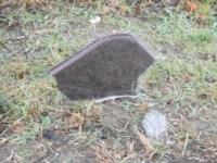 Авария. Два Фольксвагена. М2. 21.10.14, Фото: 23