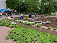 В Кировском сквере Тулы высадят 20 тысяч цветов, Фото: 7
