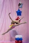 Соревнования по художественной гимнастике 31 марта-1 апреля 2016 года, Фото: 117