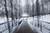 Темная сторона Платоновского парка, Фото: 20