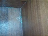 Невыносимые условия в доме №15 по улице Хворостухина, Фото: 5