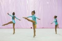 Межрегиональный турнир по художественной гимнастике — «Осенний вальс». 6-7 сентября 2014, Фото: 11