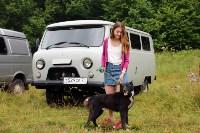 Выставка охотничьих собак под Тулой, Фото: 14