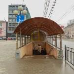 Тульские подземные переходы. 30 марта 2016 года, Фото: 5