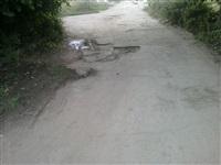 дорога к дому 8 по улице Гремицы г. Алексин, Фото: 8