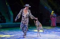 """""""Тайна пирата"""" в Тульском цирке, Фото: 110"""