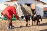 Семён Яблоновский и его ферма, Фото: 7
