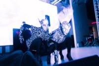 "Концерт Егора KReeD в клубе ""Пряник"", 1.11.2014, Фото: 55"