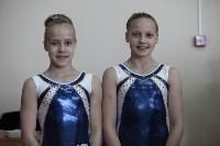 Соревнования по спортивной гимнастике на призы Заслуженных мастеров спорта , Фото: 55