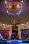 Цирковое шоу, Фото: 3