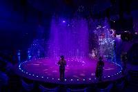 Шоу фонтанов «13 месяцев» в Тульском цирке – подарите себе и близким путевку в сказку!, Фото: 105