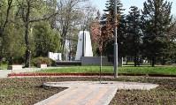 Тульская сакура зацвела в Керчи, Фото: 6