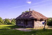 Летний день в Ясной Поляне, Фото: 15
