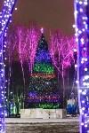 Украшение парка к Новому году, 15.12.2015 , Фото: 34