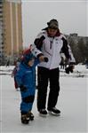 Тульские катки. Январь 2014, Фото: 3