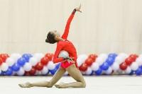 Художественная гимнастика. «Осенний вальс-2015»., Фото: 136
