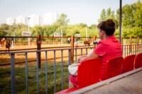 Новые лошади для конной полиции в Центральном парке, Фото: 11