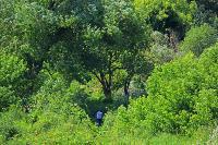 В Тульской области началась расчистка русел Оки и Упы, Фото: 6