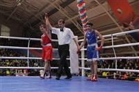 XIX Всероссийский турнир по боксу класса «А», Фото: 19
