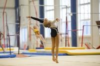Спортивная гимнастика в Туле 3.12, Фото: 82