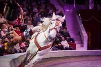 """""""Тайна пирата"""" в Тульском цирке, Фото: 119"""