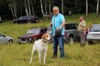 Выставка охотничьих собак под Тулой, Фото: 2