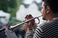 Фестиваль Крапивы - 2014, Фото: 40