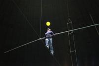 Новая программа в тульском цирке, Фото: 20