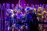Шоу фонтанов «13 месяцев» в Тульском цирке – подарите себе и близким путевку в сказку!, Фото: 9