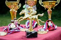 Соревнования по конкуру , Фото: 3