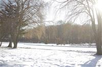 Центральный парк культуры и отдыха им. Белоусова. Декабрь 2013, Фото: 5