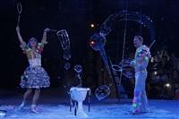 В Тульском цирке прошла премьера аква-шоу, Фото: 56