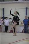 Открытый турнир по спортивной гимнастике. 23-30 ноября 2013, Фото: 8