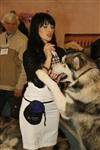 В Туле прошла всероссийская выставка собак, Фото: 8