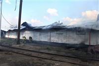 Пожар на хлебоприемном предприятии в Плавске., Фото: 13