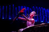 Шоу фонтанов «13 месяцев» в Тульском цирке – подарите себе и близким путевку в сказку!, Фото: 19