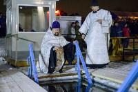 Крещенские купания-2015. Центральный парк. , Фото: 6