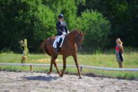 В Ясной поляне стартовал турнир по конному спорту, Фото: 112