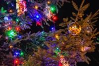 Тульские парки украсили к Новому году, Фото: 16