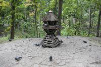 Туляки сообщают о массовой гибели уток в Платоновском парке, Фото: 9