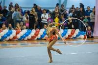 Открытый кубок региона по художественной гимнастике, Фото: 27