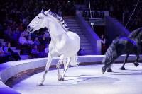 Туляков приглашают на новогоднее представление «Ёлка в цирке», Фото: 90