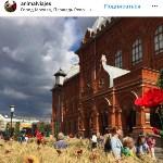 Цветочный джем: Тульское поле в Москве, Фото: 24