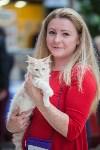 Выставка кошек в МАКСИ, Фото: 58